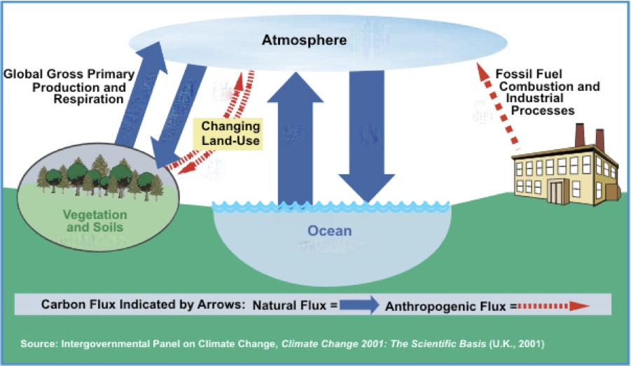 "Climate Change and the Nature of Science: The Carbon ""Tipping ..."