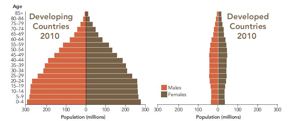 Age Distribution Pyramids 2010