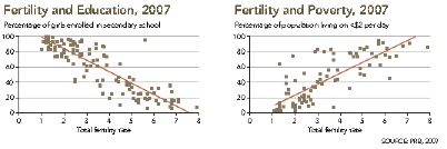 Fertility and Education