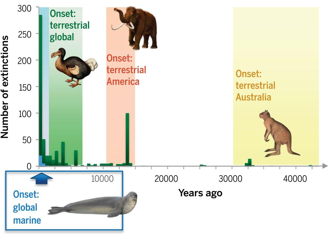 Extinction Chronology