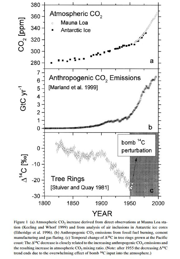 Atmospheric and anthropogenic CO2 and 14C in tree rings
