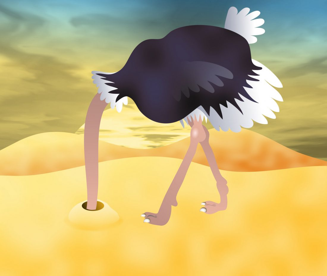 clip art of ostrich burying head in sand