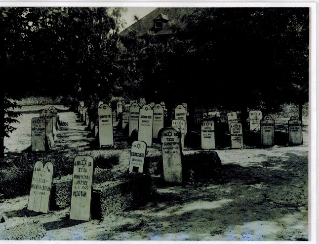 Hillersleben, Magdeburg, cemetery, Jewish, Holocaust, solar power