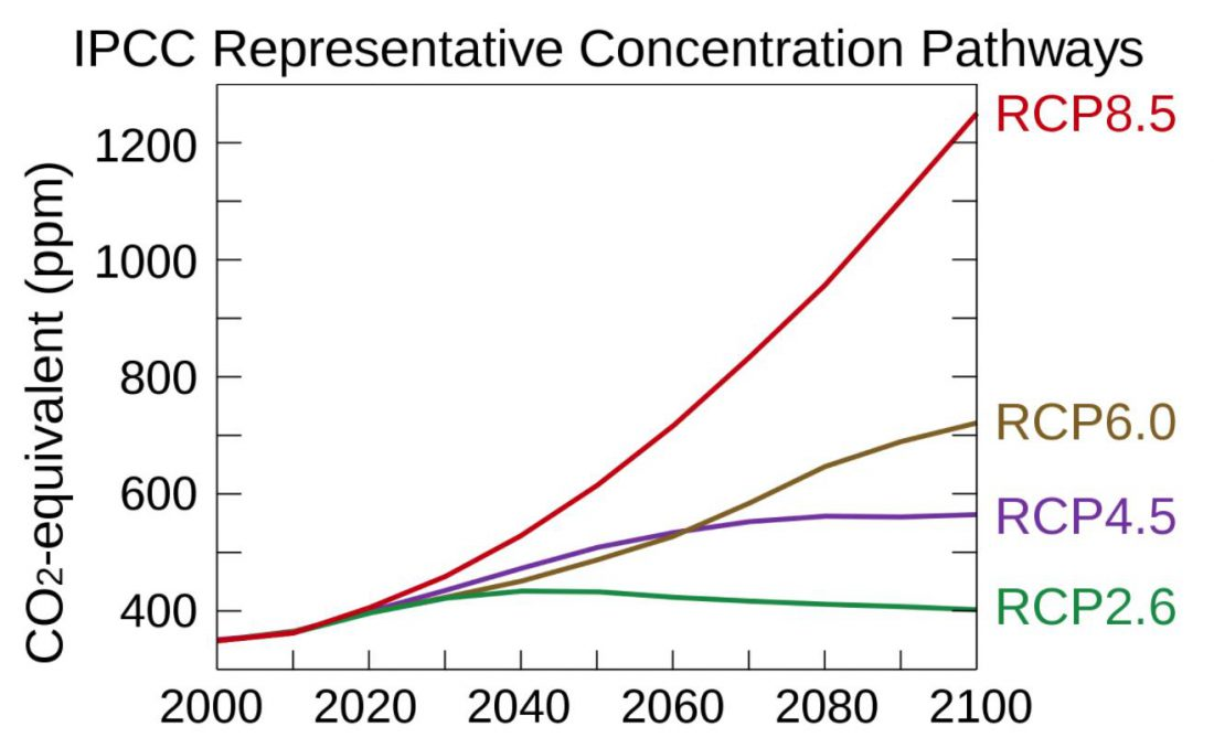 IPCC, future, RCP, CO2